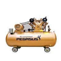 Máy Nén Khí Pegasus 10 HP -8 kg/cm2